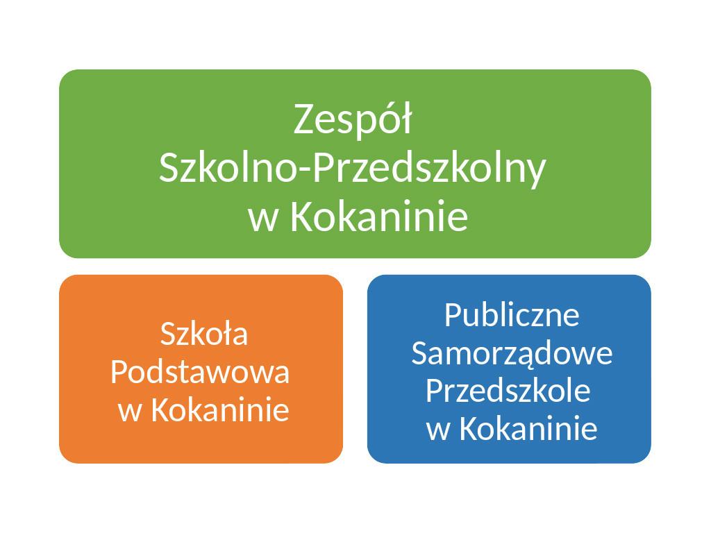 Struktuta organizacyjna